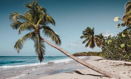 Si vous deviez prendre 3 ressources sur une île déserte…